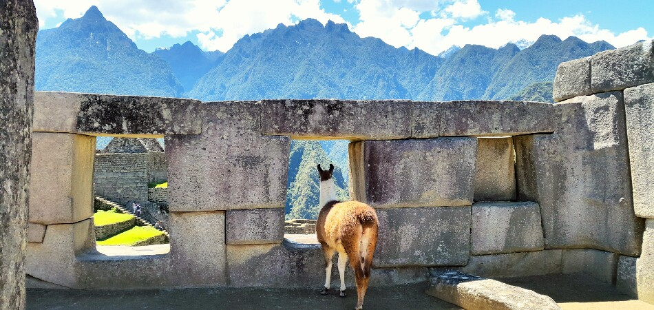 Machu Picchu Tour 3 days